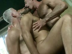 Hairy mature gay men in threesome sex videos