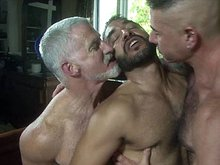 Hot mature bears have a good threesome fucking