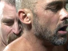 Mature gay daddies David Teal and Nick Forte fuck doggy style